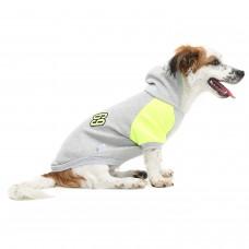 Dogi&Dog 69 Sweat (Küçük Irk)