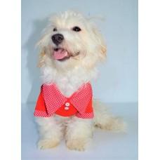 Dogi&Dog Polo Yaka T-Shirt